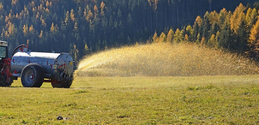 Dusičnany se do vody dostávají ze septiků a hnojišť